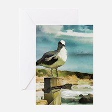 Seagull Sentry Greeting Cards