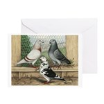 Show Racer Trio Greeting Card