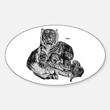 Tigers Wild Cat Oval Decal