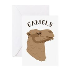 Camels Greeting Cards
