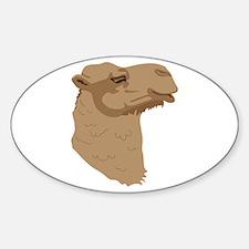 Camel Head Decal
