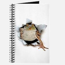 Frog Burster Journal