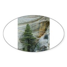 Zion Ntional Park Decal