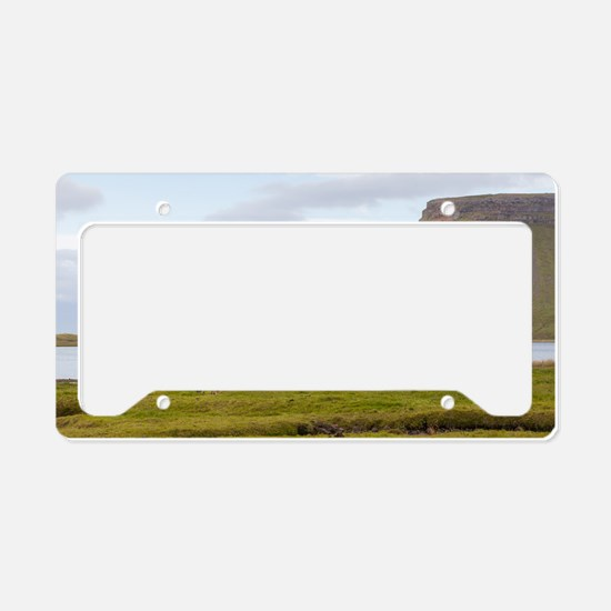 Icelandic Horses Vesturland I License Plate Holder