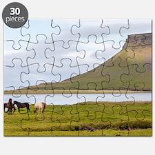 Icelandic Horses Vesturland Island Puzzle