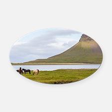 Icelandic Horses Vesturland Island Oval Car Magnet