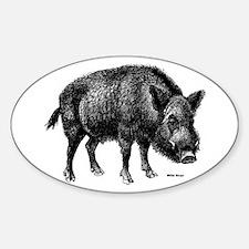 Wild Boar Oval Decal