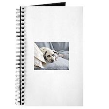 Cute Sleeping pets Journal