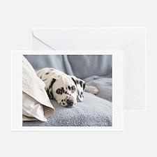 Cute Cute dog sleeping Greeting Cards (Pk of 10)
