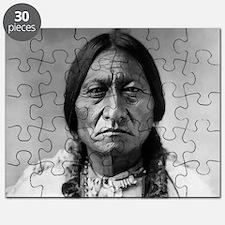 illegal immigration Puzzle