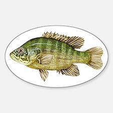 Fish Sticker (Oval)