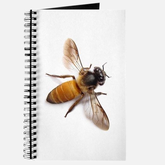 Unique Bee Journal