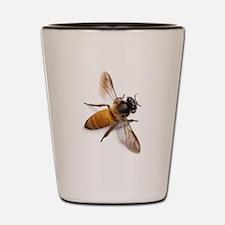Unique Bees Shot Glass