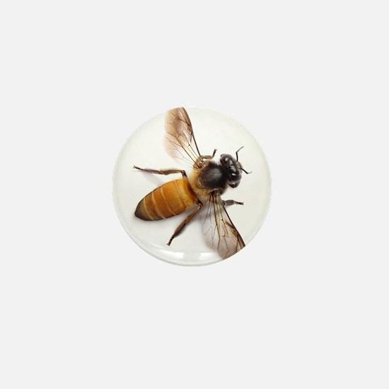Cute Honey bee Mini Button