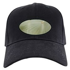 Soft Dandelion Baseball Hat