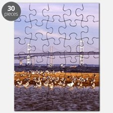 Chesapeake Bay Puzzle