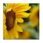 Sunflower Photo Tile Coaster