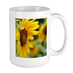 Sunflower Photo Mugs
