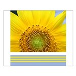 Sunflower Photo Posters