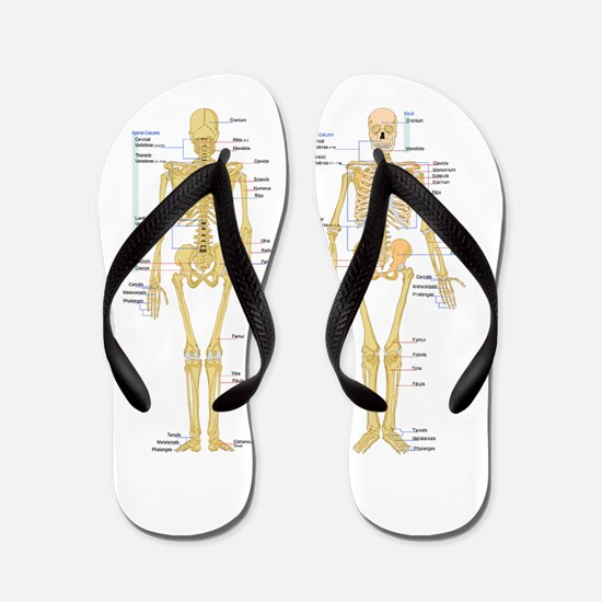 Funny Medical Flip Flops