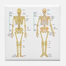 Cute Bones Tile Coaster