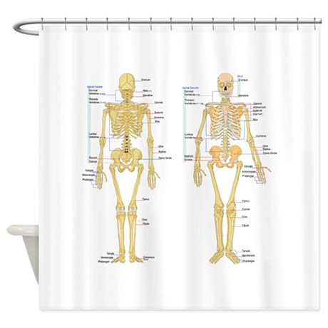 Anatomy Shower Curtains Cafepress
