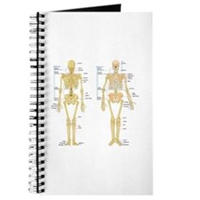 Cute Hip replacement Journal