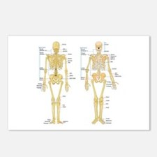 Unique Medical student Postcards (Package of 8)