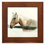 Horse Photography Framed Tile