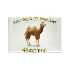 Hump day camel sign Rectangle Magnet