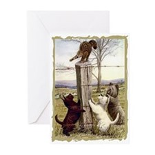 Scottie Westie & Skye Terriers Greeting Cards (Pac