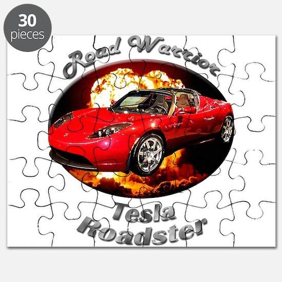 Tesla Roadster Puzzle