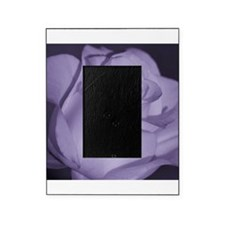 Purple Tint Rose Picture Frame