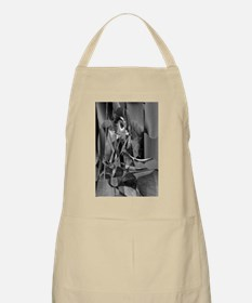 Abstract 9639 Apron