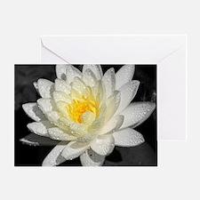 Funny White lotus Greeting Card
