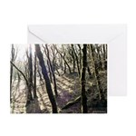 Mystic Forest Greeting Cards (6)