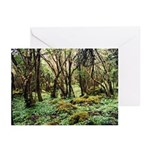 Irish Forest Greeting Cards (6)