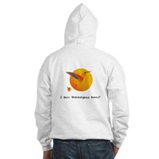 I Have Hummingbird Power Gifts Hoodie