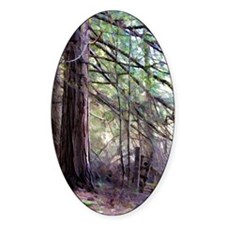 Forest Fence Decal