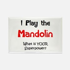 play mandolin Rectangle Magnet