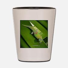 Rainbow Geckoe Shot Glass