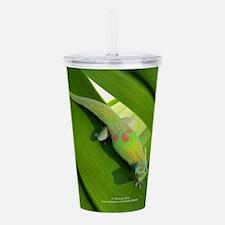 Rainbow Geckoe Acrylic Double-wall Tumbler