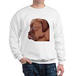 Dogue Art Sweatshirt