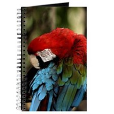 Parrot Painting Journal