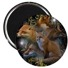 "Cute Fox 2.25"" Magnet (10 pack)"