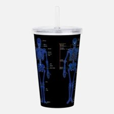 Cool Hip replacement Acrylic Double-wall Tumbler