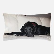 Dusty Sofa Pillow Case