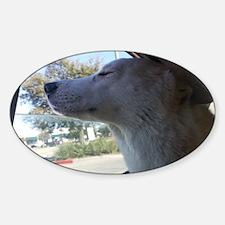 Cute Hybrid wolf Sticker (Oval)