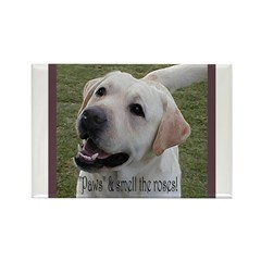Labrador Retriever Advice Rectangle Magnet (100 pa