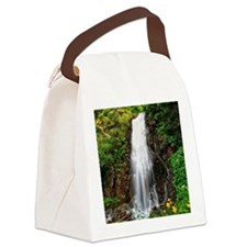 small waterfall in Val di Sole Canvas Lunch Bag